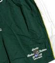 Ανδρικό μαγιό βερμούδα S.Nautica Italiana πράσινο